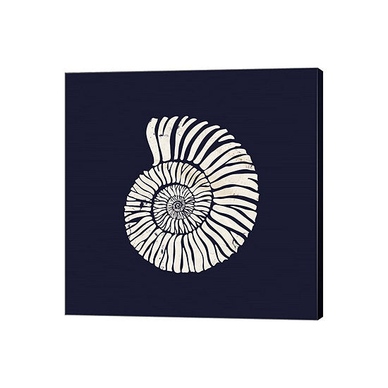 Contemporary Coastal Shell II Gallery Wrapped Canvas Wall Art On Deep Stretch Bars