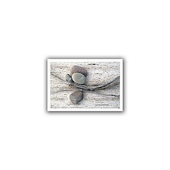 Brushstone Still Life Sticks Stones Canvas Wall Art