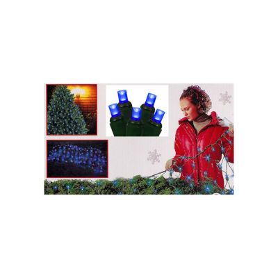 4' X 6' Blue Wide Angle LED Net Style Christmas Lights with Green Wire