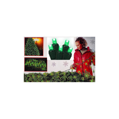 4' X 6' Green Wide Angle LED Net Style Christmas Lights with Green Wire