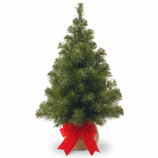 National Tree Co. 2 Foot Noble Spruce Spruce Christmas Tree