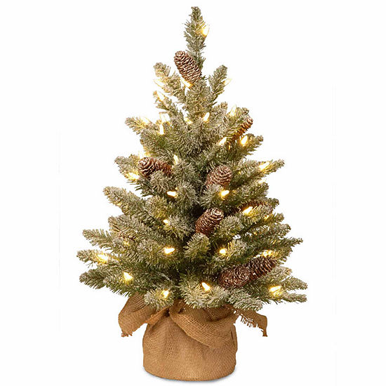 National Tree Co. 2 Foot Snowy Concolor Burlap Fir Pre-Lit Christmas Tree