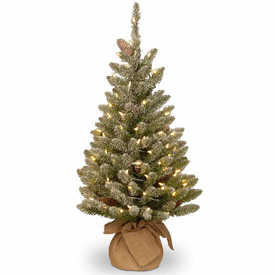 National Tree Co. 3 Foot Snowy Concolor Burlap Fir Pre-Lit Christmas Tree