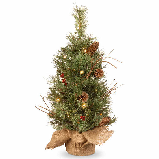 National Tree Co. 2 Foot Glistening Pine Burlap Pine Pre-Lit Christmas Tree