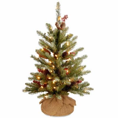 National Tree Co. 2 Foot Dunhill Fir Fir Pre-Lit Christmas Tree
