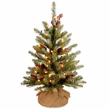 Dunhill Fir Christmas Tree.National Tree Co 2 Foot Dunhill Fir Fir Pre Lit Christmas Tree