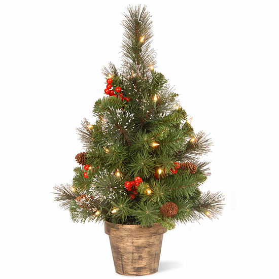National Tree Co. 2 Foot Crestwood Small Spruce Pre-Lit Christmas Tree