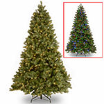 National Tree Co. 7 1/2 Foot Downswept Douglas Fir Hinged Fir Pre-Lit Christmas Tree