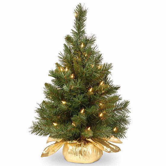 National Tree Co. 2 Foot Majestic Fir Fir Pre-Lit Christmas Tree