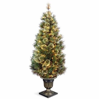 National Tree Co. 5 Foot Wispy Willow Grande Entrance Pre-Lit Christmas Tree