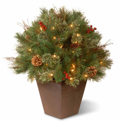 National Tree Co. 2 Foot Glistening Pine Porch Pine Pre-Lit Christmas Tree