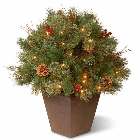 National Tree Co. 2 Foot Glistening Pine Porch Pre-Lit Christmas Tree