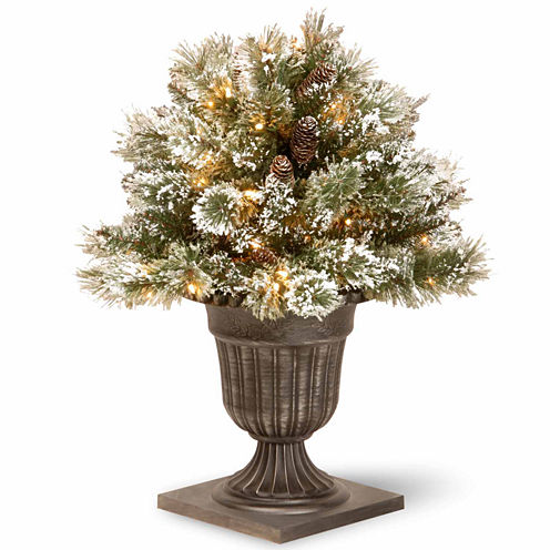 National Tree Co. 2 Foot Glittery Bristle Pine Porch Pre-Lit Christmas Tree