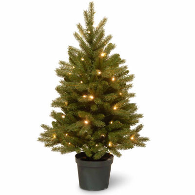 National Tree Co. 3 Foot Jersey Frasier Fir Entrance Potted Pre-Lit Christmas Tree