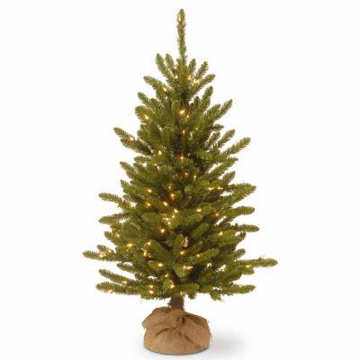 National Tree Co. 4 Foot Kensington Burlap Pre-Lit Christmas Tree
