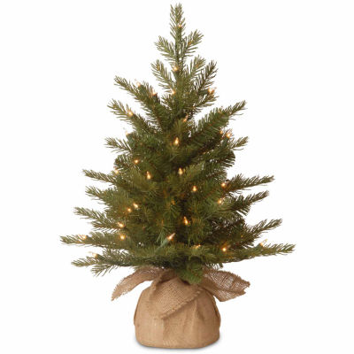 National Tree Co. 2 Foot Nordic Spruce Spruce Pre-Lit Christmas Tree