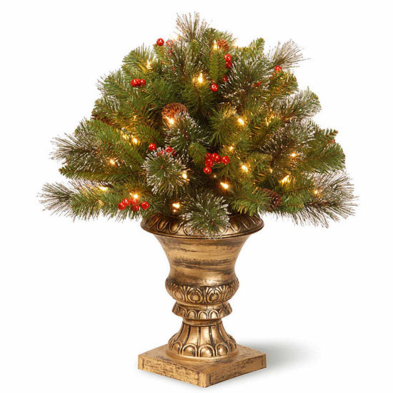 National Tree Co. 2 Foot Crestwood Spruce Porch Spruce Pre-Lit Christmas Tree
