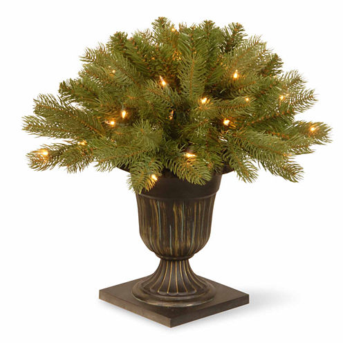 "National Tree Co. Feel-Real"" Downswept Douglas Fir Porch"" Pre-Lit Christmas Tree"