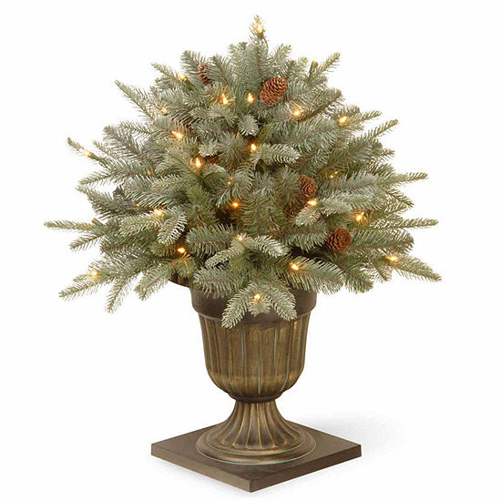 National Tree Co. 2 Foot Frosted Artic Spruce Porch Spruce Pre-Lit Christmas Tree
