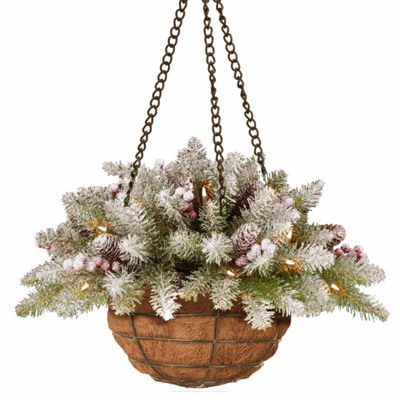 National Tree Co. Dunhill Hanging Basket