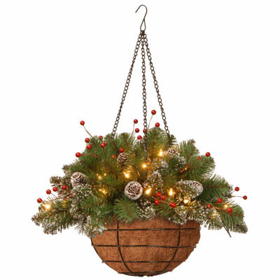 National Tree Co. Glittery Mountain Spruce Hanging Basket