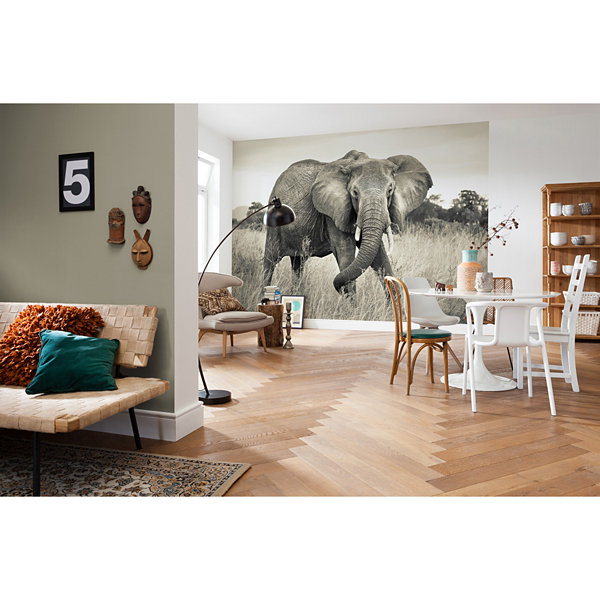Brewster Wall 4-pc. Wall Murals
