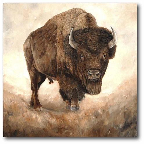 Buffalo Canvas Wall Art