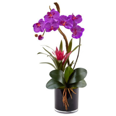 Orchid and Bromeliad Silk Arrangement in Glossy Black Cylinder Vase