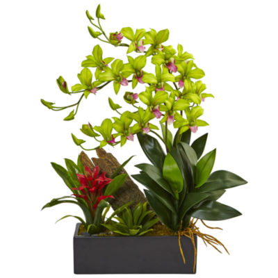 Dendrobium Orchid and Bromeliad Silk Arrangement in Planter