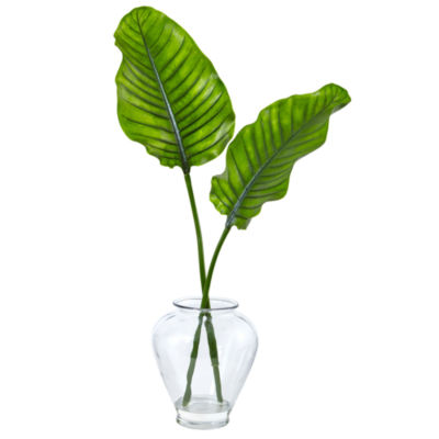 Traveler's Palm in Glass Vase