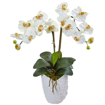 Double Phalaenopsis Orchid Silk Arrangement in White Vase