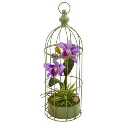 Cattleya Orchid Silk Arrangement in Decorative Bird Cage