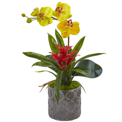 Mini Phalaenopsis Orchid and Bromeliad Silk Arrangement in Gray Vase