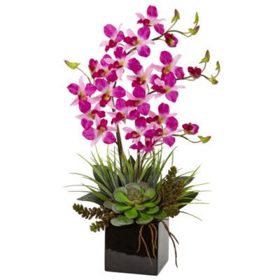 Orchid and Succulent Artificial Arrangement in Black Vase