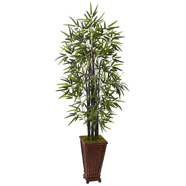 5.5' Black Bamboo Artificial Tree in DecorativePlanter