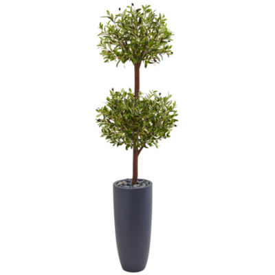 6' Olive Double Artificial Tree in Gray CylinderPlanter
