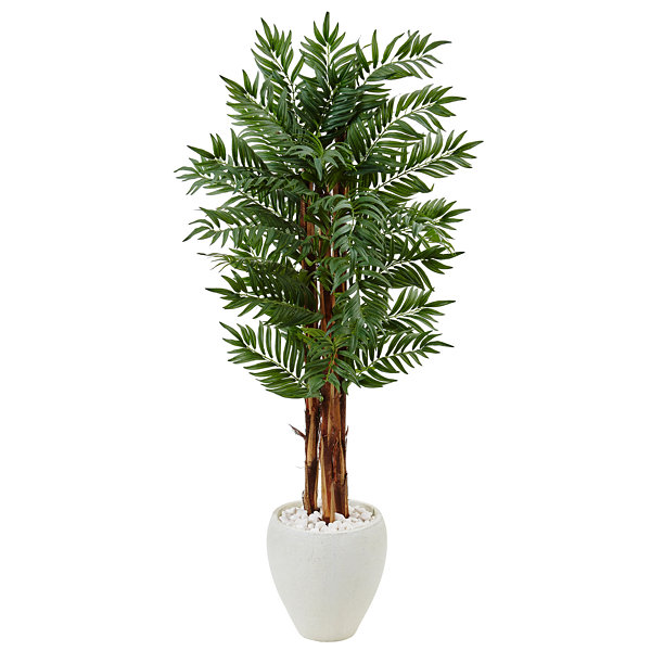 5' Parlor Palm Artificial Tree in White Oval Planter