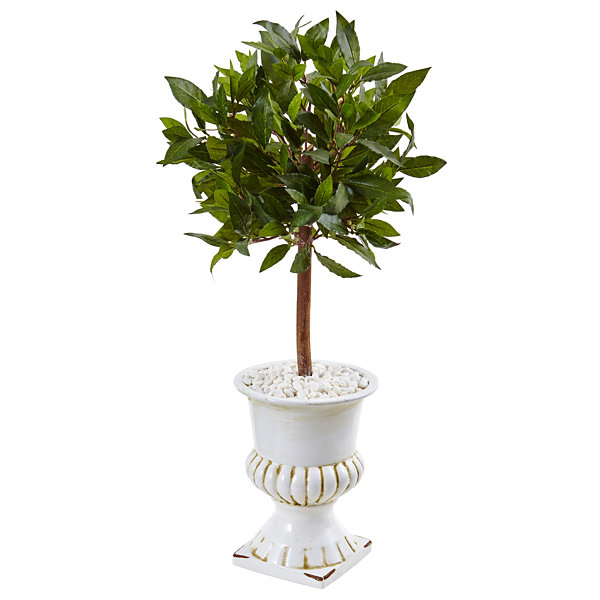 2.5' Sweet Bay Mini Topiary Artificial Tree in White Urn