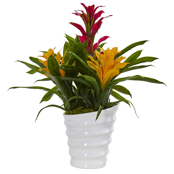 Tropical Bromeliad Artificial Plant in White Swirl Vase