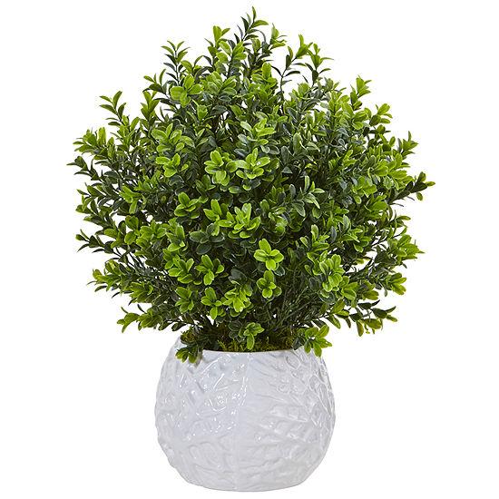 Boxwood Evergreen Artficial Plant in White Vase (Indoor/Outdoor)
