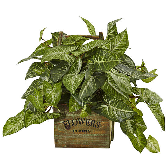 Nephthytis Artificial Plant in Rustic Wood Box Planter