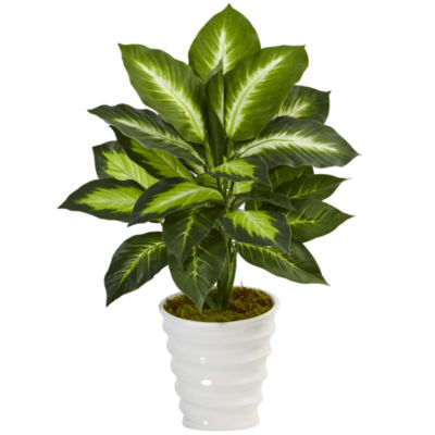 Dieffenbachia Artificial Plant in Swirl Planter