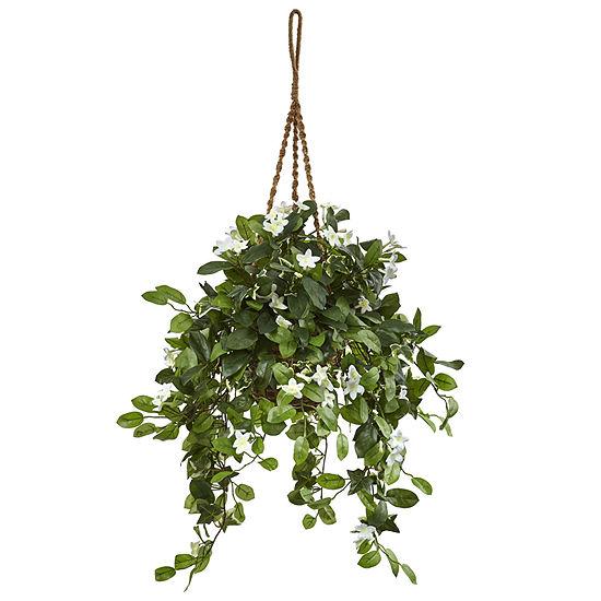 Stephanotis Flowering Artificial Plant in Hanging Basket