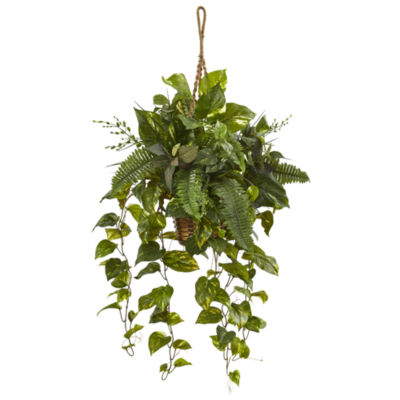 Mixed Pothos and Boston Artificial Fern in Hanging Basket