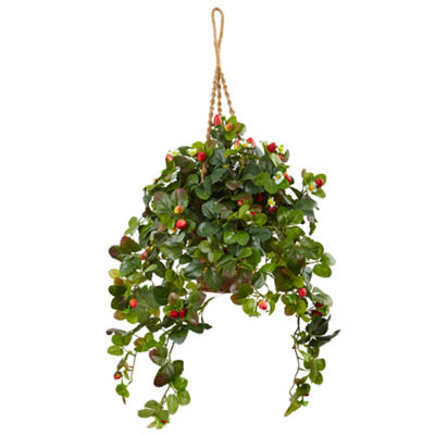 "41""H Strawberry Bush Silk Arrangement in Hanging Basket"""