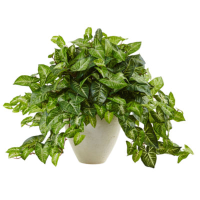 Nephthytis Artificial Plant in White Planter