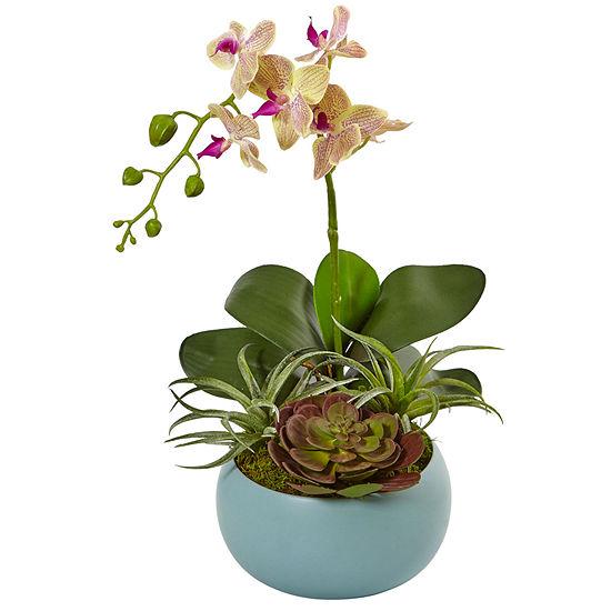 Phalaenopsis Orchid And Succulents Artificial Arrangement In Decorative Vase
