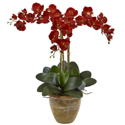 Triple Stem Phalaenopsis Silk Arrangement; Seasonal