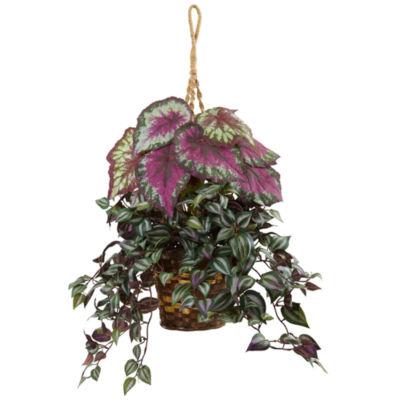 Wandering Jew and Begonia Silk Hanging Basket