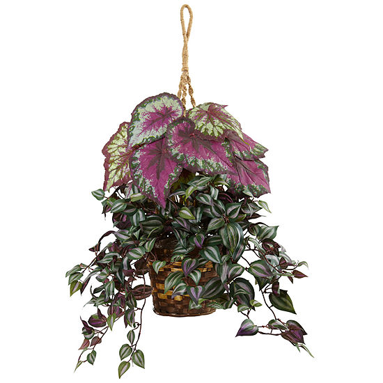 Wandering Jew and Begonia Silk Hanging Basket